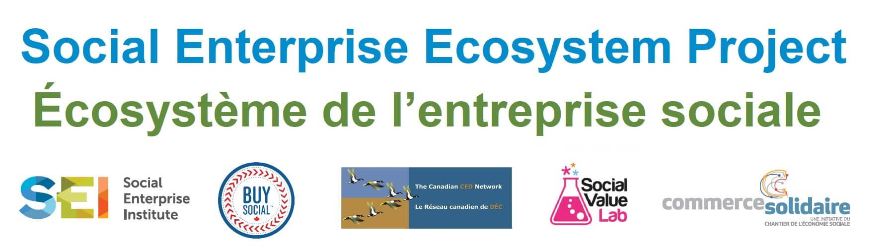 social enterprise ecosystem project